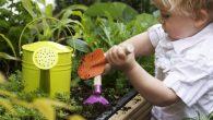 Ребенок играет в саду